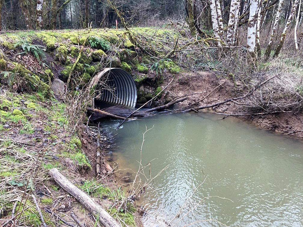 Culvert Fish Barrier